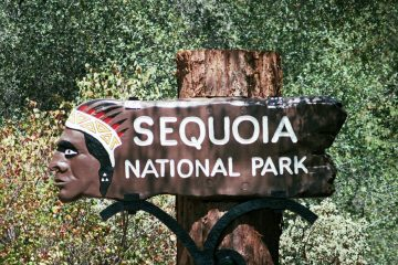 #SequoiaNationalPark